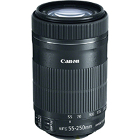 Canon EF-S 55-250mm f/4-5.6 IS STM Telephoto Lens - 8546B002 / EFS55250STM - IN STOCK