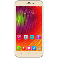 CellAllure CAPHG4203 Miracle 6.0 in. 4G Factory Unlocked Smartphone -  Gold - CAPHG4203 - IN STOCK