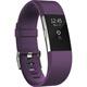 Fitbit FB407SPMS