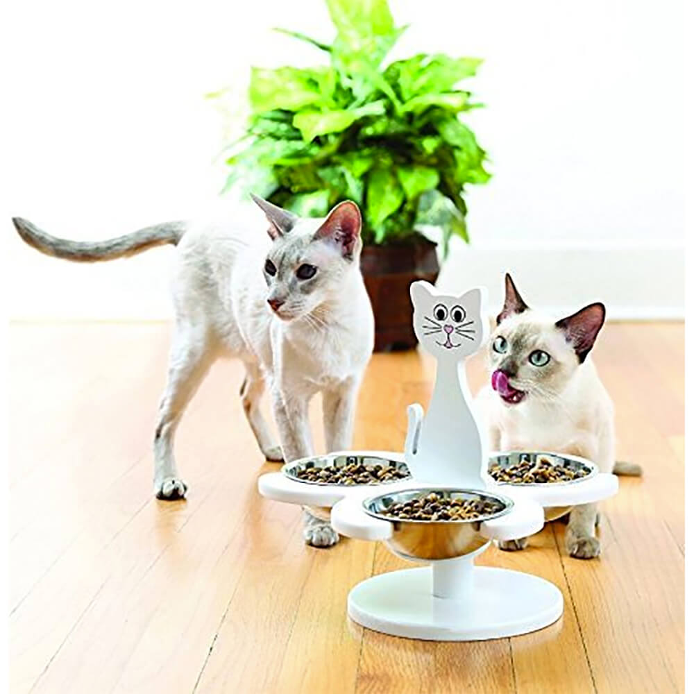 Multi Cat Feeder